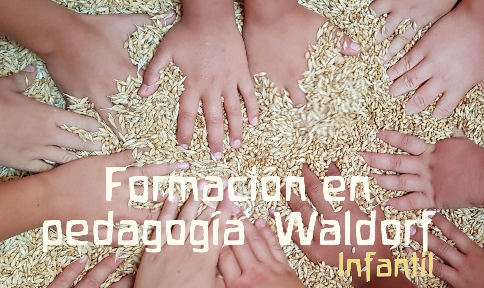 Formación en Pedagogía Waldorf Infantil